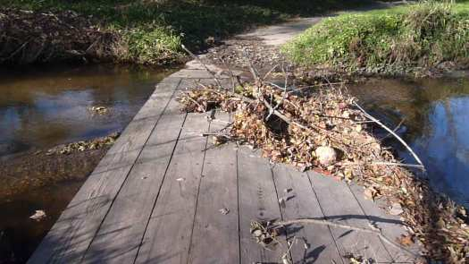 Closeup of Flotsam on Second Low Bridge