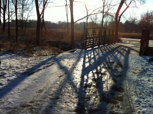 Rabbit Bridge with Shadows