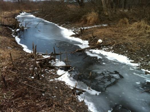 Broken Ice Refrozen