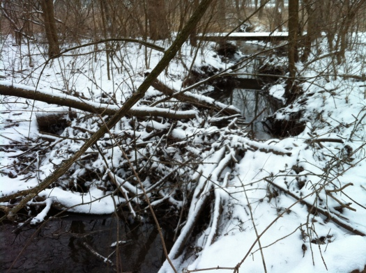 Small Beaver Dam, with Snow
