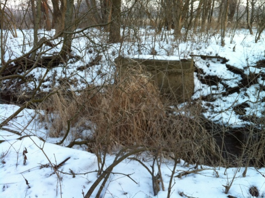 Davis Creek Bridge Remains