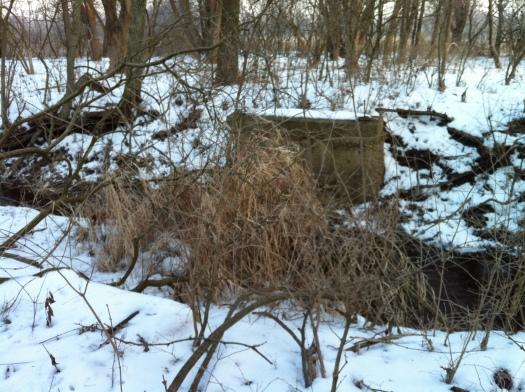 Davis Creek Bridge Remains