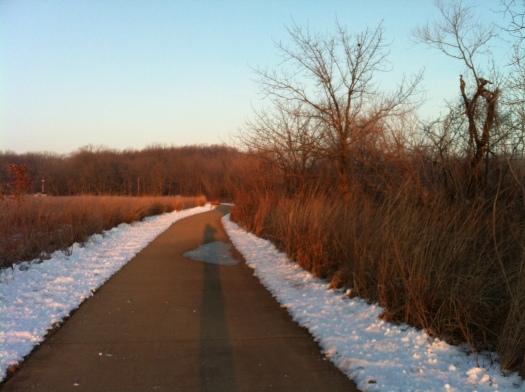 DeerDown the Path in Sun