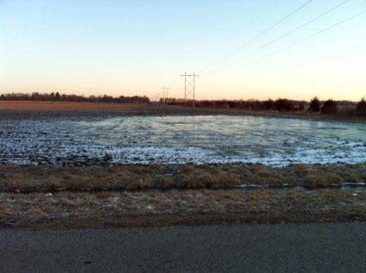 Frozen Wet Field, East Washington St