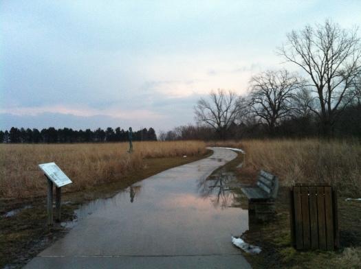 Puddle on Path Near Marker