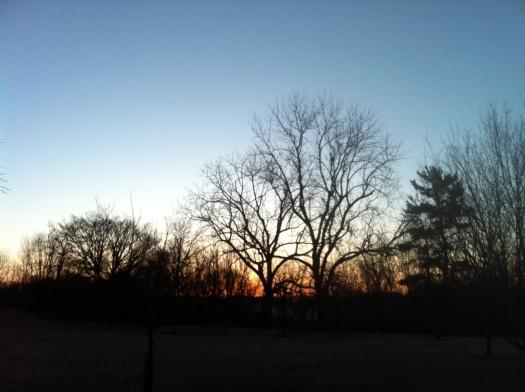 Simple Sunrise Meadowbrook 17 Feb 13