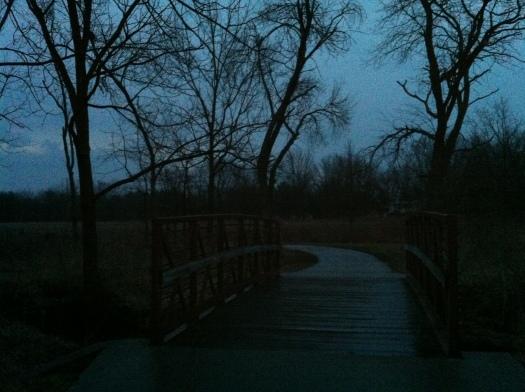 Spring-Forward Morning at Rabbit Bridge