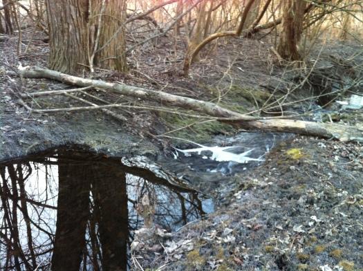 Still Water, Flowing Water