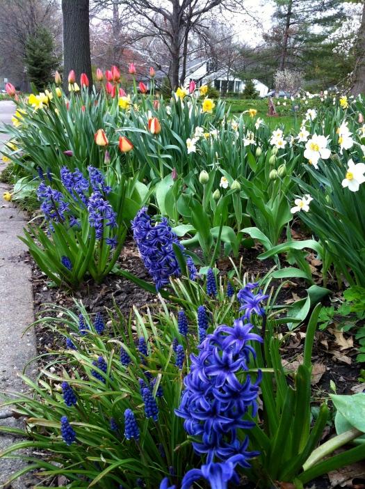 Blue Hyacinths and Foils