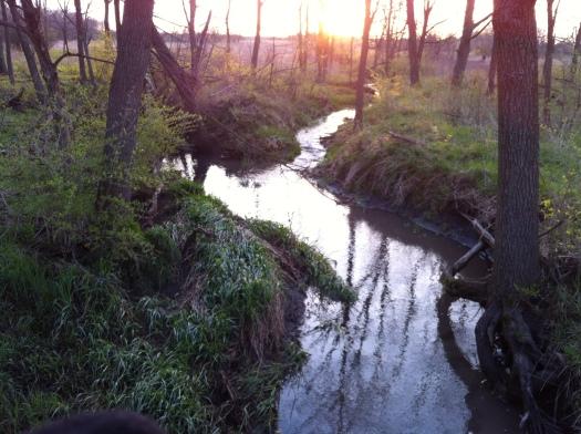 High Water Davis:McCullough 21 Apr 13