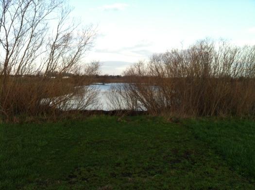 Izzak Walton Pond