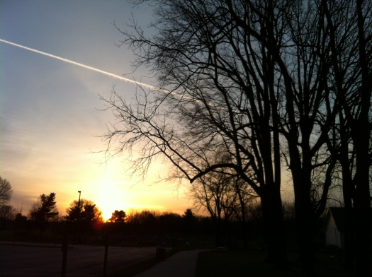 Sunrise Meadowbrook Garden Plots 21 Apr 13