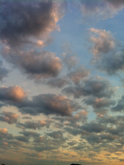 Rosy Bunch of Sunrise Clouds